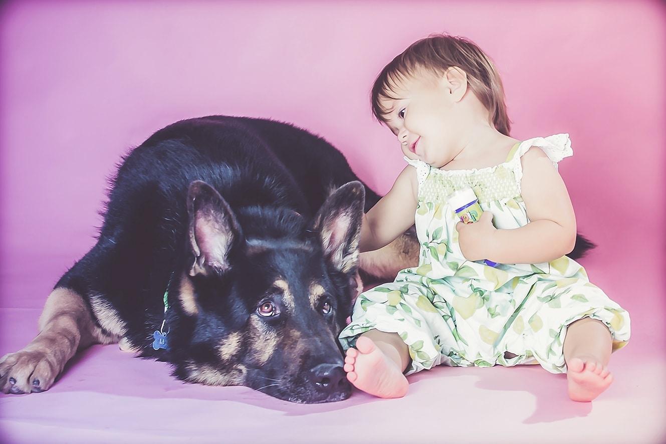 צילום תינוקת בסטודיו עם רועה גרמני רקע ורוד